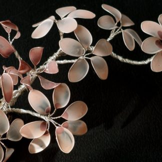 Lackblüten Beige