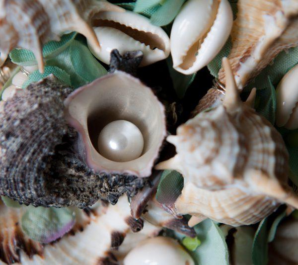 Trichtermuschel mit Perle