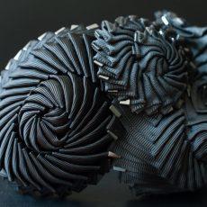 Die Schwarze Nautilus